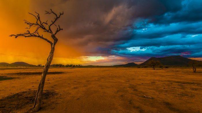 Namibia, Januar 2014