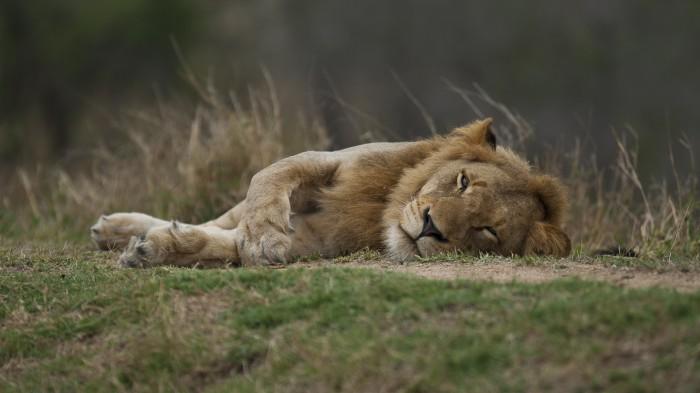 Südafrika, Oktober 2011