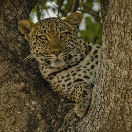Südafrika, Oktober 2009